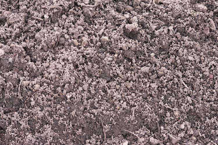Close up of aggregate - bs3882 topsoil